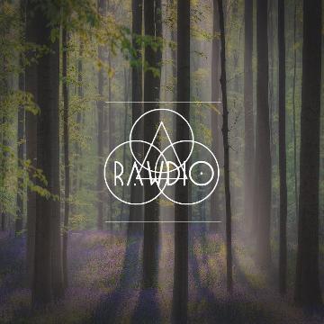 Rawdio