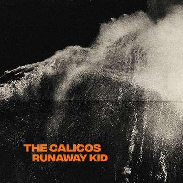 The Calicos